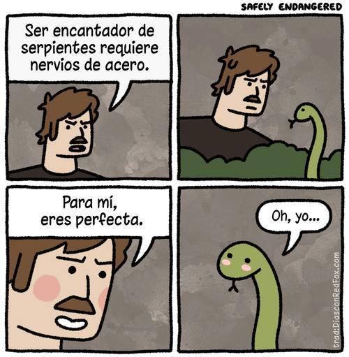 ser encantador de serpientes